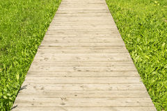 Wooden road through grass Stock Photo