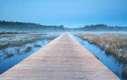 Wooden road on misty swamp Stock Photography