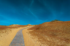 Wooden road in the sand dunes. Stock Photos