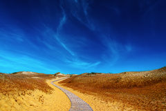 Wooden road in the sand dunes. Royalty Free Stock Image