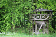 Wooden Roman Limes outlook tower Royalty Free Stock Image