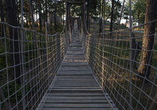 Wooden rope bridge. In the forest Royalty Free Stock Image