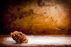 Wooden Rose Background Stock Photo