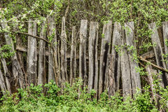 Wooden rotting old fence in the village Royalty Free Stock Photography