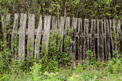 Wooden rotting old fence in the village Stock Photo