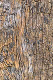 Wooden rough cracked Royalty Free Stock Photo