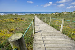 Wooden route on the north of Portugal Royalty Free Stock Images