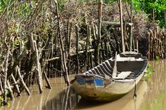 A wooden row-boat hidden in a muddy backwater. Royalty Free Stock Image
