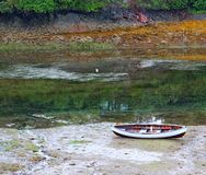 Wooden rowboat in the slough Royalty Free Stock Photos