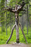 Wooden russian spirit of forest, vertical Stock Image