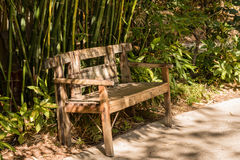 Wooden rustic bench. Of ecological materials with bamboo trees behind it Royalty Free Stock Photography