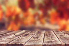 Wooden rustic boards in front of vineyard background in autumn. ready for product display. Royalty Free Stock Image