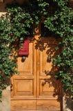 Wooden rustic door under green climbers Stock Photos