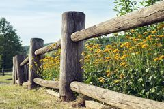 Wooden rustic fence and flowerbed in village. Stock Photography