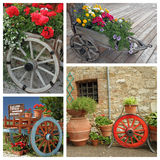 Wooden rustic planters. Flowering plants in wooden planters with wheel Stock Photo