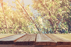 Wooden rustic table in front of spring cherry tree Stock Photo