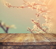 Wooden rustic table in front of spring white cherry blossoms tree. vintage filtered image. product display and picnic concept Royalty Free Stock Images