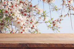 Free Wooden Rustic Table In Front Of Spring Cherry Blossoms Tree. Product Display And Picnic Concept. Stock Photos - 110632403