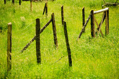 Wooden, rusty fence on a green, countryside grass Royalty Free Stock Images