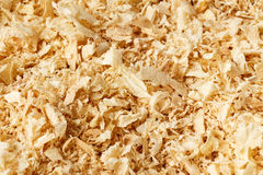 Wooden sawdust texture Stock Photography