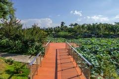 Wooden scenic path  in garden Stock Photos
