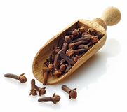 Wooden scoop with cloves. On a white background Royalty Free Stock Photo