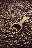 Wooden scoop in coffee beans Royalty Free Stock Photo