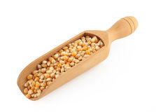 Wooden scoop with corn grain. On white background Stock Photo