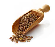 Wooden scoop with cumin Royalty Free Stock Photography