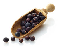 Wooden scoop with dried juniper berries Royalty Free Stock Photography
