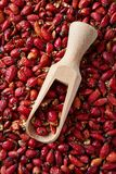 Wooden scoop with dried organic rose hip royalty free stock images