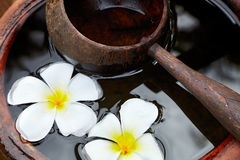 Wooden scoop and flowers. Water-filled ceramic pot with a wooden scoop and flowers Stock Image