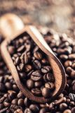 Wooden scoop full of coffee beans on old oak table.  Royalty Free Stock Photo