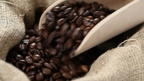 Coffee beans in burlap sack with wooden scoop. Wooden scoop pushed into coffee beans in burlap sack stock footage