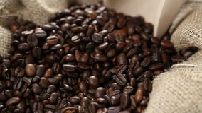 Scoop pushed into coffee beans in burlap sack stock video