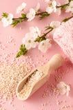 Wooden scoop with sea salt Stock Photo