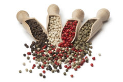Wooden scoops with black, white,green and red peppercorns Royalty Free Stock Photo