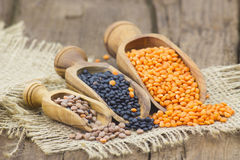 Wooden scoops with lentils Royalty Free Stock Photo