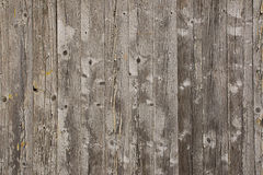 Wooden screen of boards Royalty Free Stock Photography