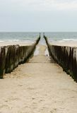 Wooden sea breakers Royalty Free Stock Photography