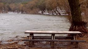 Wooden Seat Bench near the Lake stock video footage