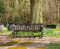 Wooden Seat in an English Cemetery Royalty Free Stock Images