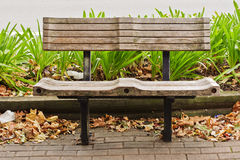 Wooden Seat with Green Plants, Leaves and Rubbish Royalty Free Stock Photo