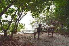 A Wooden Seat in Shade of Green Trees in Littoral Forest on White Sandy Beach - Peace and Relaxation. This is a photograph of a wooden bench in shade of green stock photo