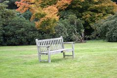 Wooden seat. Wooden bench Royalty Free Stock Images