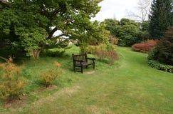 Wooden seat. Wooden bench in a sunken garden Stock Photography