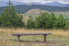 Wooden seating bench in nature Stock Images