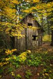 Wooden shack with fall foliage Royalty Free Stock Photo