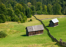 Wooden shacks on the field with the forest behind Stock Images
