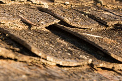 Wooden shakes of an old shingle roof. Wooden rustic shakes of an old decayed shingle roof Royalty Free Stock Images